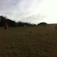 Box Hill fell race 2012