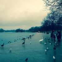 A wet and wild start to 2014 at the Serpentine New Year's Day 10k